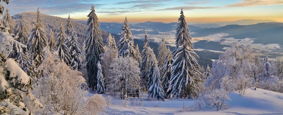 winterwanderwege urlaub im bayerischen wald zellertal tourismus drachselsried arnbruck. Black Bedroom Furniture Sets. Home Design Ideas